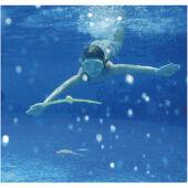 Merülő játék, víz alatt sikló játék merüléshez, búvárkodáshoz (160036)