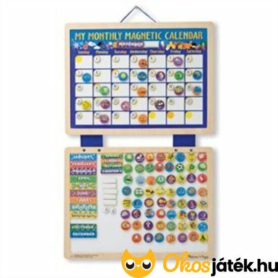 Fanaptár- mágneses fa naptár gyerekeknek (ANGOL!) - Melissa 13788 (ME)