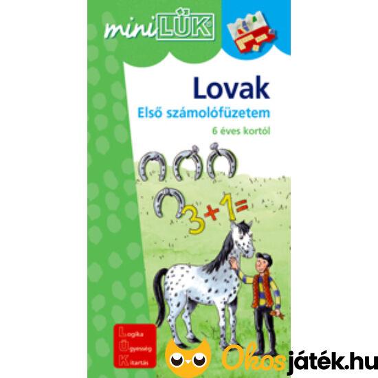 Lovak / Számvágta LÜK mini füzet LDI217 (DI)